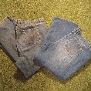 Cato's Women's Jeans 28W